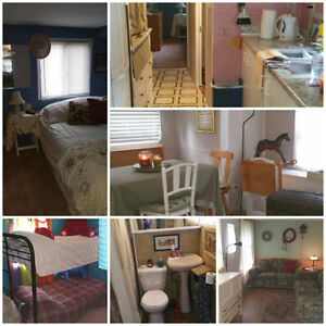 The Dollhouse is for Sale