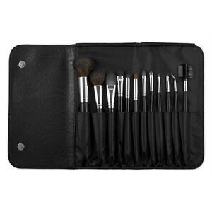 Coastal Scents 12 Piece Brush Set With Case BR-SET-015