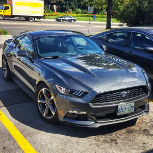 MODDED 2016 Mustang V6 Coupe (2 door) with $3000+ Modifications!