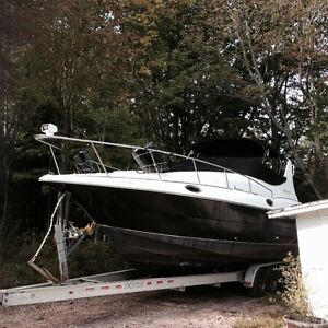 30Ft Yacht Rogue  Twin 5 Litre Mercs  4Ft Swim Platform