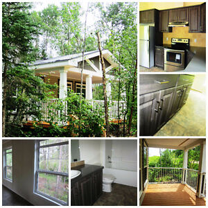 Shores on Cowan Show home Cabin for sale!!