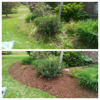 free landscaping quotes, over 10 years experience