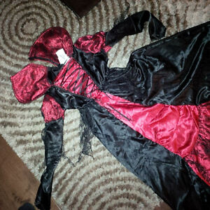 Witch Dress with Tiara Kitchener / Waterloo Kitchener Area image 1