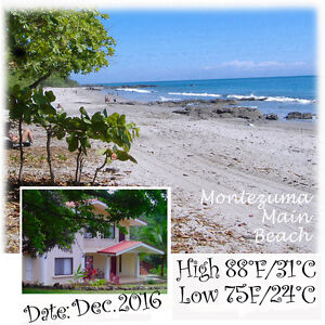 Spacious Tropical Apartment w/ Pool - Montezuma - COSTA RICA