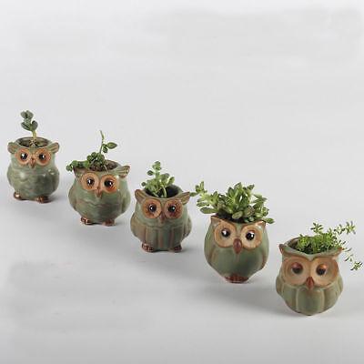 Cute Mini Owl Ceramic Succulent Planter Pot Flower Plant Garden Decor Gift