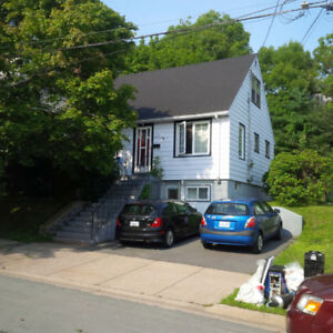 North Halifax - Nice 3 br on quiet street - Avail Sept. 1