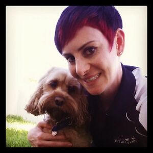 Happy Pet Helpers  -   Pet Minding, Dog Walking& Pet Taxi Hillcrest Port Adelaide Area Preview