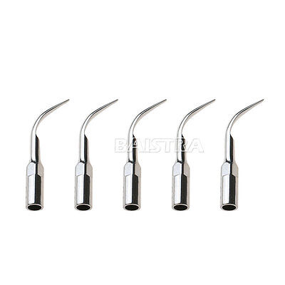 5pcs Dental Scaling Tip G1 Ultrasonic Scaler Fit Ems And Woodpecker Hand Piece