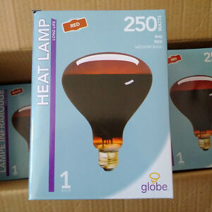 6 BOX HEAT LAMP 250 WATTS
