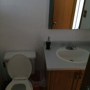 Looking For Roommates / Renters Strathcona County Edmonton Area image 2