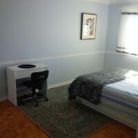 Big room! One week 150$.Two weeks 250.Special - 3days only!
