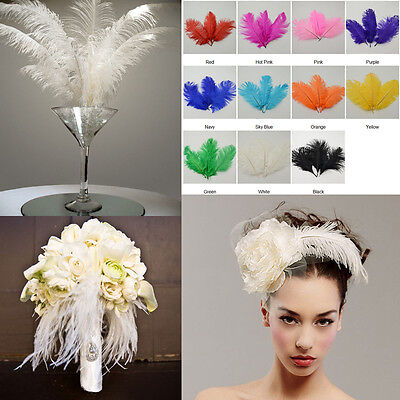 "10PC High Quality Natural Ostrich Feathers Wedding Party Xmas 6-8""/15-20cm Decor"