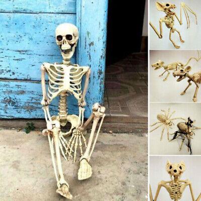 Gruselige Skelett Fledermaus Gruselige Dekoration - Halloween Skelett Dekoration