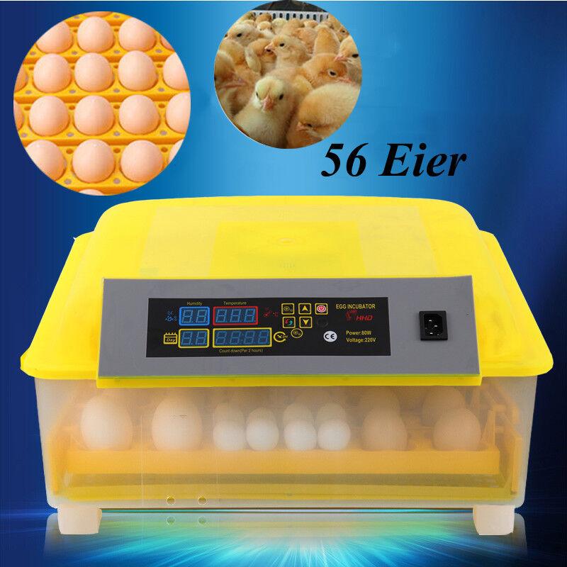 56 Eier Inkubator Brutmaschine Brutkaste Brutapparat Geflügel Inkubator 220 V