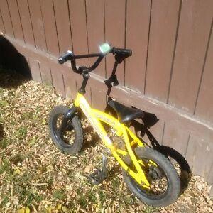 Boy's Norco Bike