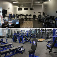 SMALL GROUP STRENGTH TRAINING CLASSES