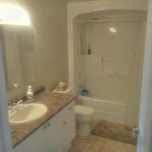 Clean Private Upper Level in Executive Home Kitchener / Waterloo Kitchener Area image 2