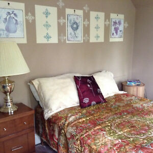 Room(s) in Tillsonburg character house London Ontario image 7