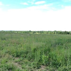 130 ACRES FARM LAND NEAR COBDEN