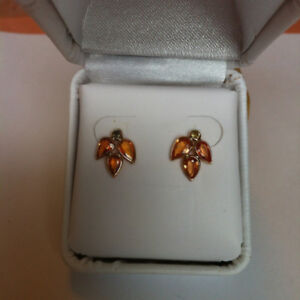 14k Gold Earrings  (New)