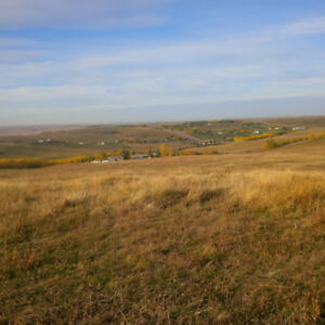 Horse pasture for rent on home owners 40ac acreage