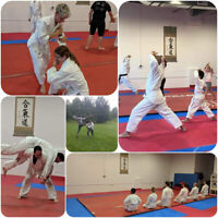 Aikido (Japanese martial arts) One Month for FREE