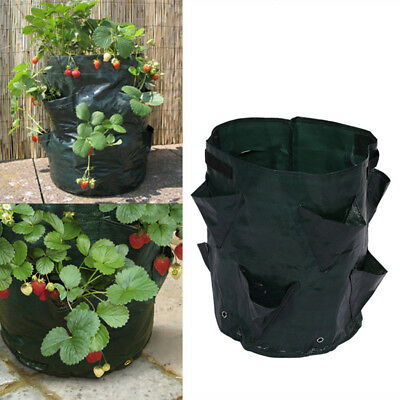 Indoor Wall Garden Planting Pot Bag Fruit Vegetable Strawberry Grow Bag Pouch