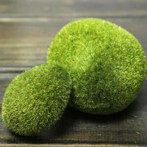 2 x mousse verte boules aquarium faux artificiel plantes for Acheter aquarium boule
