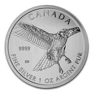 1 oz 2015 Canadian Birds of Prey Series - Red Tailed Hawk $5