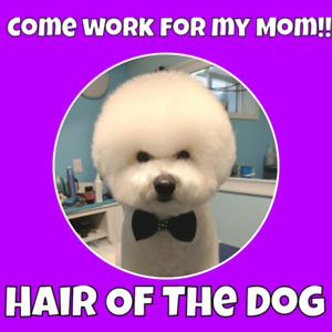 EXPERIENCED DOG GROOMER WANTED!!