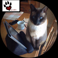 KLAWS is seeing a fundraising administrator!