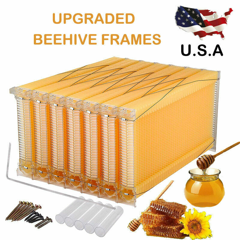 7PCS Auto Flow Honeycomb Beehive Wax Frames Beehive Set For Beehive Box US STOCK