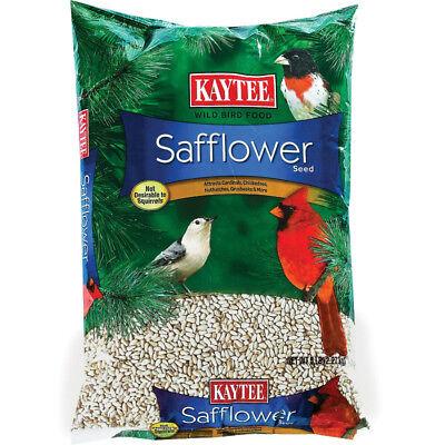 Kaytee 100033710 Safflower Seed for Birds, 5 Lb