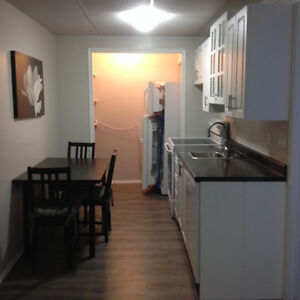 Furnished basement suite for Sask polytechnic student