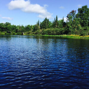 REDUCED Waterfront 5 lakes under $280k with 40+ miles boating