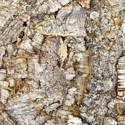 """Zierkorkrückwand - """"Natur"""" 90 x 60 cm , Naturkork Rückwand fürs Terrarium"""