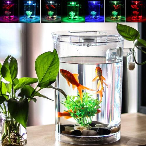Creative Ecology Mini LED Fish Tank Luminous Glass Tank Aquarium Fish Tank