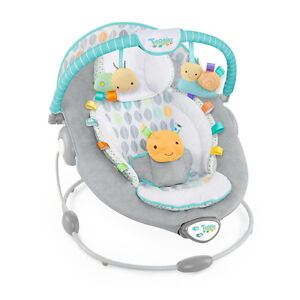 Taggies baby bouncer chair