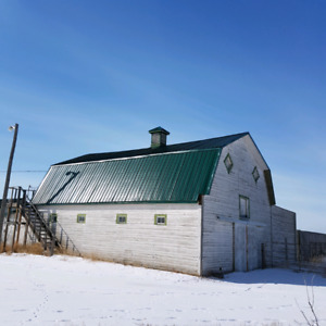 Mini Ranch/Acerage on 10 Acres near Empress, AB