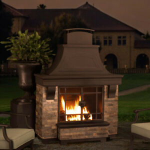 Outdoor Fire Place - brand new in crate - $1500.00