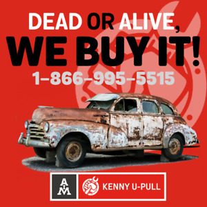 Dead OR Alive, we buy your car ! Best prices ! CA$H !