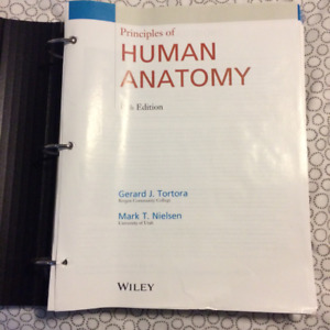 Principles of Human Anatomy (Tortora & Nielsen)  14th edition