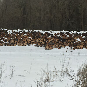 Dry hard fire wood for sale Peterborough Peterborough Area image 1