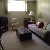 Fully furnished, one-bedroom apartment