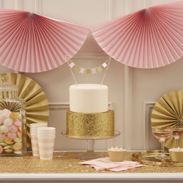 GINGER RAY PASTEL PERFECTION PARTY WEDDING SUPPLIES SOLD FOR HOSPICE