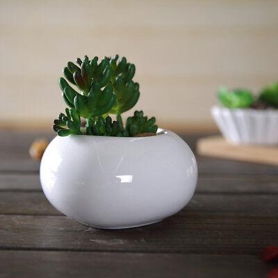 - Mini Ceramic Succulent Planter Flower Pot White Porcelain Pot Plant Garden Decor