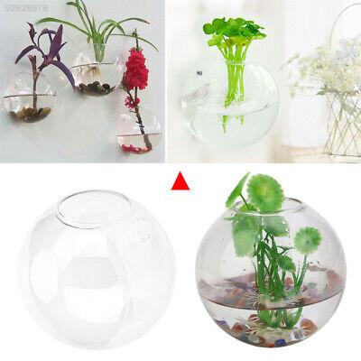 Wall Hang Glass Flower Plant Vase Terrarium Container Home Garden Decor Ball 8cm