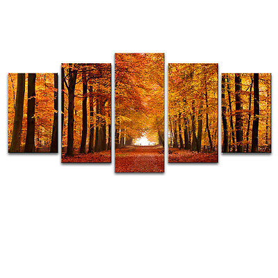 Canvas Wall Art Print Painting Pictures Home Decor Autumn Forest Brown Landscape