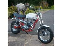 1973 Fantic Super Rocket 49cc Monkey Bike, Super Rare Classic Vintage Collectors