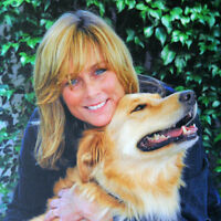 PENSION POUR CHIENS- HOME BOARDING (West island)